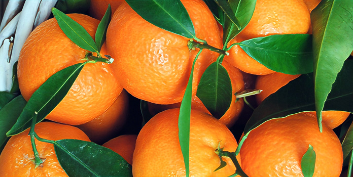 Психология оранжевого